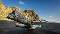Driftwood (Stefan Marks) Tags: tasmansea wigmorebay bay beach cloud driftwood nature ocean outdoor rock sand sky wave aucklandwaitakere northisland newzealand