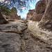 City of Rocks, Deming NM