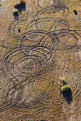 Hot Air Balloon Ride - Albuquerque, New Mexico (BeerAndLoathing) Tags: aerialphotography newmexico rp newmexicotrip aerial albuquerque rainbowryders roadtrip trips usa spring hotairballoon canonef1740mmf4lusm canoneosrp 2019 canon balloonride nm april