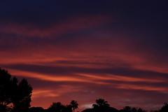 Sunset 5 5 19 #05 (Az Skies Photography) Tags: sun set sunset dusk twilight nightfall sky skyline skyscape scottsdale arizona az scottsdaleaz arizonasky arizonasunset red orange yellow gold golden salmon black may 5 2019 may52019 5519 552019 canon eos 80d canoneos80d eos80d canon80d arizonaskyscape arizonaskyline