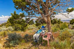 Looking for a Companion (KPortin) Tags: chair tree roadsideattraction bakernevada whimsical