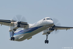 Itami Airport 2019.5.24 (15) JA464A / ANA WINGS' DHC-8-400 (double-h) Tags: d5 afsnikkor500mmf4efledvr rjoo itm osakaairport itamiairport 大阪空港 伊丹空港 airplane 飛行機 higashisuimon 東水門 ja464a anawings ana anaウイングス dhc8400 dash8