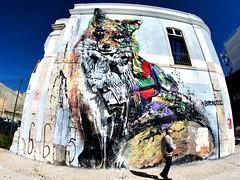 The Fox (kuestenkind) Tags: streetart lissabon lisboa lisbon europe europa portugal canon 6d weitwinkel fisheye fuchs fox