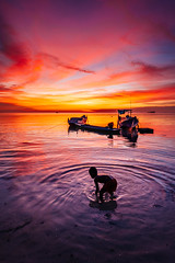 Blue hour at Rajuni Island beach (syukaery) Tags: boy kid child sunset rajuni island takabonerate nationalpark humaninterest dailylife pier indonesia nikon nikkor 1635mm d750 activities dusk boats