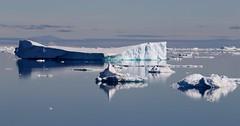 Small icebergs in the calm ocean (Paul Cottis) Tags: weddellsea antarctica ice iceberg ocean 1 february 2019 feb paulcottis reflection blue sky
