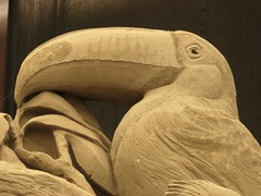 Toucan at the world nature assembly in sandsculptures, Garderen (Alta alatis patent) Tags: garderen sandsculpture animal nature toekan toucan beak