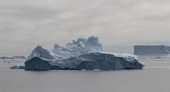 A smorgasbord of iceberg shapes (Paul Cottis) Tags: weddellsea antarctica ice iceberg ocean 1 february 2019 feb paulcottis blue sky