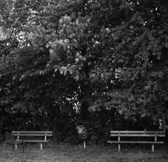 Angestuhlt ... (alf sigaro) Tags: zeissikonsuperikontaiii superikonta53116 zeissikon zeiss superikontaiii ikonta zeissikonsuperikonta53116 tessar13575mm tessar badenwürttemberg kodakprofessionalt400cn 6x6 sw bw stuhl bank bench bänke