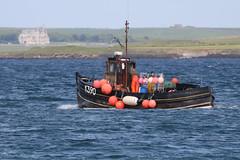 K390 Michael J Kirkwall (Roger Wasley) Tags: k390 michaelj fishing boat vessel kirkwall harbour orkney scotland