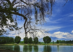 Solitude !! (Lopamudra !) Tags: lopamudra lopamudrabarman lopa landscape jhelum reflection mirror chinar tree trees azure clouds cloud sky skyscape mountain mountains hills himalaya himalayas kashmir kasmir jk india placid tranquil solitude silence silhouette nature artistic artwork river stream water waterscape peace beauty beautiful picturesque