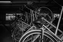 Bicycle parking (Quince_tan) Tags: 20190607 leicam10dtyp9217 leitzsummilux114352nd saitama