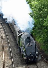 usa 8412 (m.c.g.owen) Tags: union south africa 60009 a4 pacific steam engine uk lner gresley british railways the dartmouth express long ashton somerset june 9th 2019 locomotive bristol kingswear railway touring company