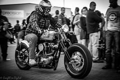 Krazy Horse Bike Night-Harley (Caught On Digital) Tags: bikes burystedmunds choppers custom harleydavidson krazyhorse motorcycles motorbikes oldskool suffolk