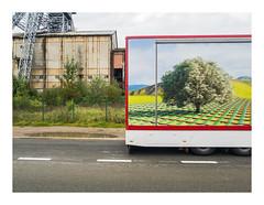 170930_173432_oly-PEN-f_heusden-zolder_de schacht_9/9 (A Is To B As B Is To C) Tags: aistobasbistoc b belgië belgium limburg heusdenzolder koolmijn koeltorenlaan deschacht truck trailer tree arbre boom floorheating stripes road industrialheritage industry industrial tower steel olympus penf color