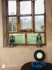 Iran Dessert (welcometoiran) Tags: welcometoiran welcometoirantours welcome wood working window windows walls winter dessert iran iranian ir irantravelagency islamic islam iranians island irantours travel tree table makeiranmemory muslim moslem mosque
