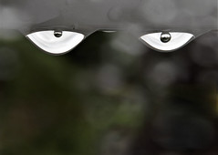 Watching you (alexi278) Tags: abstract impression face haunting shapes circles ovoid faceraindrops