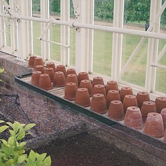 Inside A Greenhouse (msganching) Tags: greenhouse pots terracotta tidy glasshouse bridgeend garden essex tocw swc swcwalk130 saffronwalden