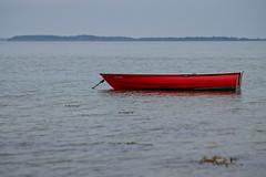Rotes Boot (Digitalsucher) Tags: boot boat outside sea ocean water wasser see 3d popup red digital olympus 75mm18 7518 meer 75mm 18 m43 mft nature landscape panasonic dmcg80 dmcg81 dmcg85 g80 g81 g85 dslm csc