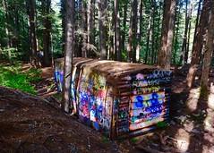 Nestled (joanne clifford) Tags: whistlertrainwreck cheakamusriver rainforest wreck boxcar nature forests art graffiti trains trainwreck britishcolumbia whistlerbc whistler