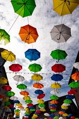 IMG_6577 (Julia Knop) Tags: juliakoester juliaköster juliaknop denmark dänemark vejle umbrellas regenschirme umbrella regenschirm colors colours farben sunshine sonnenschein
