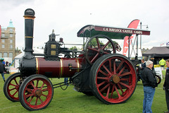 2019-06-08-09 (rpierse2) Tags: traction engine town country show cambridge