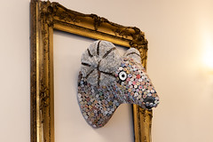 Fabric rams head in frame by Clive Wells (wells117) Tags: indoors golgframe head pretty horns cute inside different material eye gold wall frame hanging nice kingslynn norfolk england