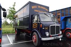 Add Watermark20190608041803 (richellis1978) Tags: truck lorry haulage transport logistics gaydon classic commercial show 2019 aec mercury bees vnr785