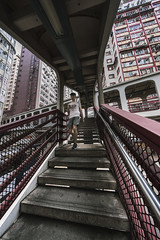 Skyway (mikemikecat) Tags: skyway overline bridge pedestrian footbridge one person man only hong kong architecture mikemikecat north point tram terminus full length built structure real people rail transportation lifestyles public staircase railroad station railing women leisure activity track way forward connection made steps staircases outdoors