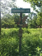 Hummingbird lane (timp37) Tags: sign june illinois hummingbird canyon lane 2019 sagawau one 1