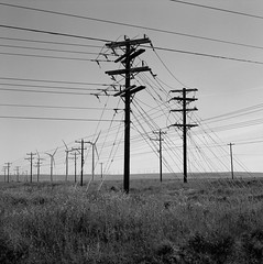 Along a Road, Washington (austin granger) Tags: road backroad washington utilitypoles telephonepoles posts wires topography turbines windmills lines electricity power film square gf670