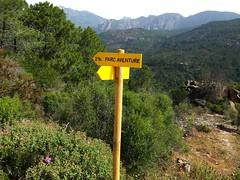 Operata1906080001 (Corse sauvage) Tags: operata opération operatadu08062019 cavu luviu ancienchemindeluviu luvviu piste pistedeluviu démaquisage tronçonneuse nettoyage ratissage