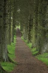 Beecraigs Country Park, Scotland (Paul Emma) Tags: uk scotland lothian linlithgow beecraigscountrypark beecraigs countrypark