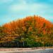 Oregon Slope.jpg