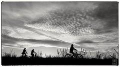 Plaisir de rouler à vélo (r0llsky) Tags: bicycle vélo balade ciel contrejour nb bw blackandwhitephotography mobilephoto photophone noiretblanc