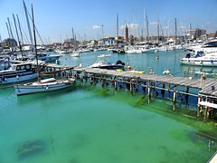 i love the sleeping beauty of the harbor. (simona300) Tags: light harbor porto barca boat acqua waters civitanovamarche marche italy riflesso green travelphotography