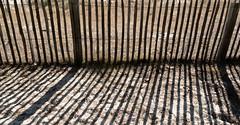 Ombres et lumières (balese13) Tags: ares gironde 16300 nikonpassion nikon tamron barreaux bordelais barrière balese tamronaf16300mmf3563dillvcpzdmacrob016 250v10f 500v20f 1000v40f 1500v60f