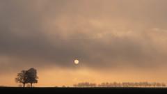 Morgensonne vertreibt Nebel (markusgeisse) Tags: frühling wolken nebel sonne sonnenaufgang bäume morgen dämmerung feld sunrise dust light sun cloud landscape sunset sky nature tree orange trees
