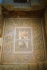 satyros & antiope ve galatia mozaiği / satyros & antiope and galatia mosaic