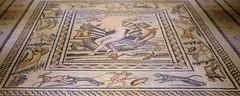 aphrodithe'in doğuşu mozaiği / mosaic of birth of aphrodithe