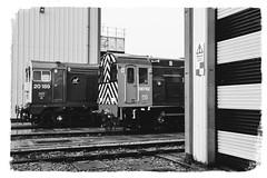Scottish Widows (cmc_1987) Tags: 20189 08762 class08 class20 crewedieseldepot br britishrail locomotive shunter englishelectric pilot type1 rmslocotec