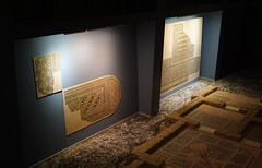 hamam kompleksi mozaikleri / mosaics of bath complex