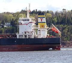 Artemis - IMO 9291640 (J. Trempe 3,960 K hits - Merci-Thanks) Tags: stefoy quebec canada ship navire fleuve river stlaurent stlawrence petrolier tanker artemis