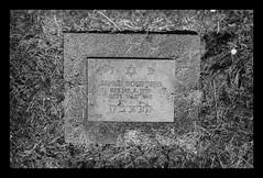 Jewish Victim of forced labour in Nazi-Germany (SurfacePics) Tags: blackandwhite blackwhite bw sw einfarbig monochrome schwarzweis samuelrosenberg jüdisch juden jude jewish jewishmemorial slaveworkers forcedlabour zwangsarbeit zwangsarbeiter victim opfer salzgitter jammertal niedersachsen lowersaxony deutschland germany europe europa friedhof cemetery warcemetery gedenkstätte memorial monument ostarbeiter gräber grab kriegsgräberstätte drittesreich rüstungsfabrik reichswerke reichswerkehermanngöring ael arbeitserziehungslager nsverbrechen nazigermany crime juni 2019 surfacepics outdoor historical historisch history geschichte denkmal gedenkstein amazing stunning kriegswirtschaft stille grave graveyard gravestone massgrave massengrab tumblr instagram sonyalpha77ii exploration holocaust shoa judenverfolgung antisemitismus davidstern israel