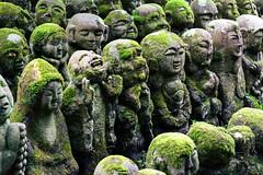 Otagi Nenbutsu-Ji (Cyril PiCancri) Tags: japon japan temple sanctuaire sanctuary vert green rakan statue kyoto