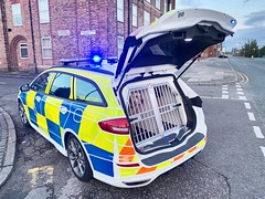 Merseyside Police Dog Section (DG19 DGZ) (LGM999) Tags: ford police mondeo merseyside stline dogsection dg19dgz
