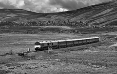 Glen Truim (whosoever2) Tags: uk united kingdom gb great britain scotland nikon d7100 train railway railroad june 2019 glentruim highland mainline gbrf class66 66746 66743 royalscotsman boatofgarten dundee newtonmore dalwhinnie