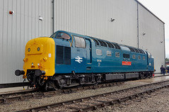 55019 crewe 08.06.2019 (Dan-Piercy) Tags: deltic class55 55019 crewe openday