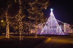 Charleston Christmas (itsbrandoyo) Tags: christmaslights christmas parkcircle downtown charleston northcharleston southcarolina sc lowcountry hannukah stmichaelschurch fireproofbuilding bokeh ledlights led cannonpark