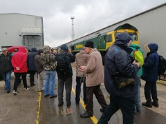 Soggy Spotters (JohnGreyTurner) Tags: crewe diesel depot cheshire 2019 br rail uk railway train transport locomotive services limited lsl engine display exhibition openday