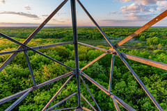 Fire Tower Sunrise - St. Croix State Park, Minnesota (Tony Webster) Tags: minnesota nixon saintcroixstatepark stcroixstatepark firetower helpstampoutnixon observationtower sky spring stampoutnixon statepark trees crosbytownship unitedstatesofamerica